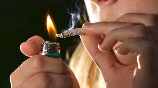life insurance quotes for marijuana use